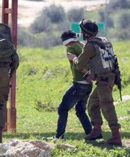 الاحتلال يعتقل 400 فلسطيني خلال الشهر الماضي