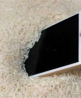 خبراء يحذرون: لا تضع هاتفك في الأرز بعد سقوطه في الماء