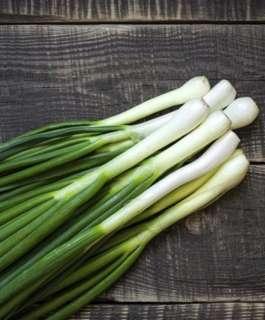 """6 فوائد مذهلة لتناول البصل الأخضر """"يحمي من السرطان"""""""