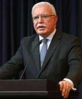المالكي: فتح تحقيق الجنائية الدولية يثبت احترامها لولايتها واستقلالها