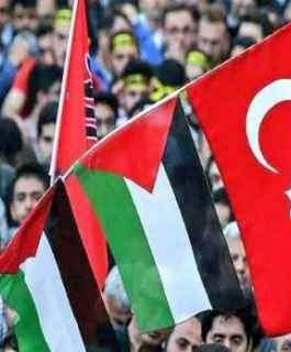 تركيا: حريصون على حمل لواء قضية فلسطين في كل محفل