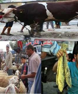 غزة تحتفل بالعيد رغم الحصار والعدوان