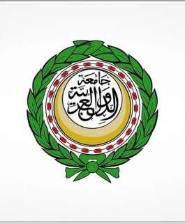 الجامعة العربية تحذر من التداعيات الخطيرة لتفاقم الحالة الصحية للأسرى المضربين
